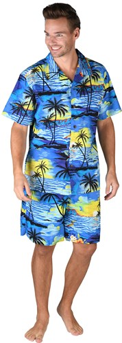 Hawaii Hemd blau