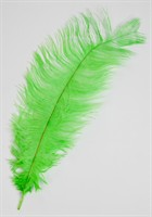 Feather drap fluorescent green (L=35 cm)