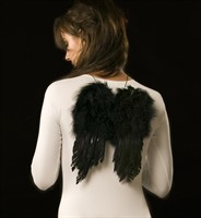 Feather wings small black (24x32 cm)