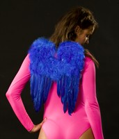 Feather wing medium blue (32x43 cm)