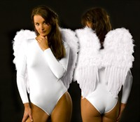 Feather wings large white (53x58 cm)