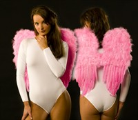 Feather wings large baby-pink (53x58 cm)