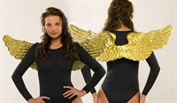 Angel wings gold (88x24 cm)