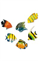 Tropical fishes 6pcs Ø(6.5cm)