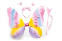 Wing set rainbow 3pcs