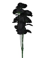 Bouquet roses black 6pcs