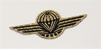 Badge pilot (k) 5,5cm long