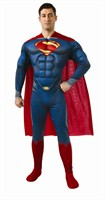 Superman Muscle Chest Adult