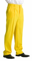 trousers luxury yellow