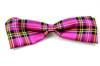 Bow tie Pinky