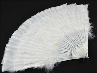 Fan white/white with feathers
